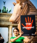 TTIP, CETA – What is the problem?